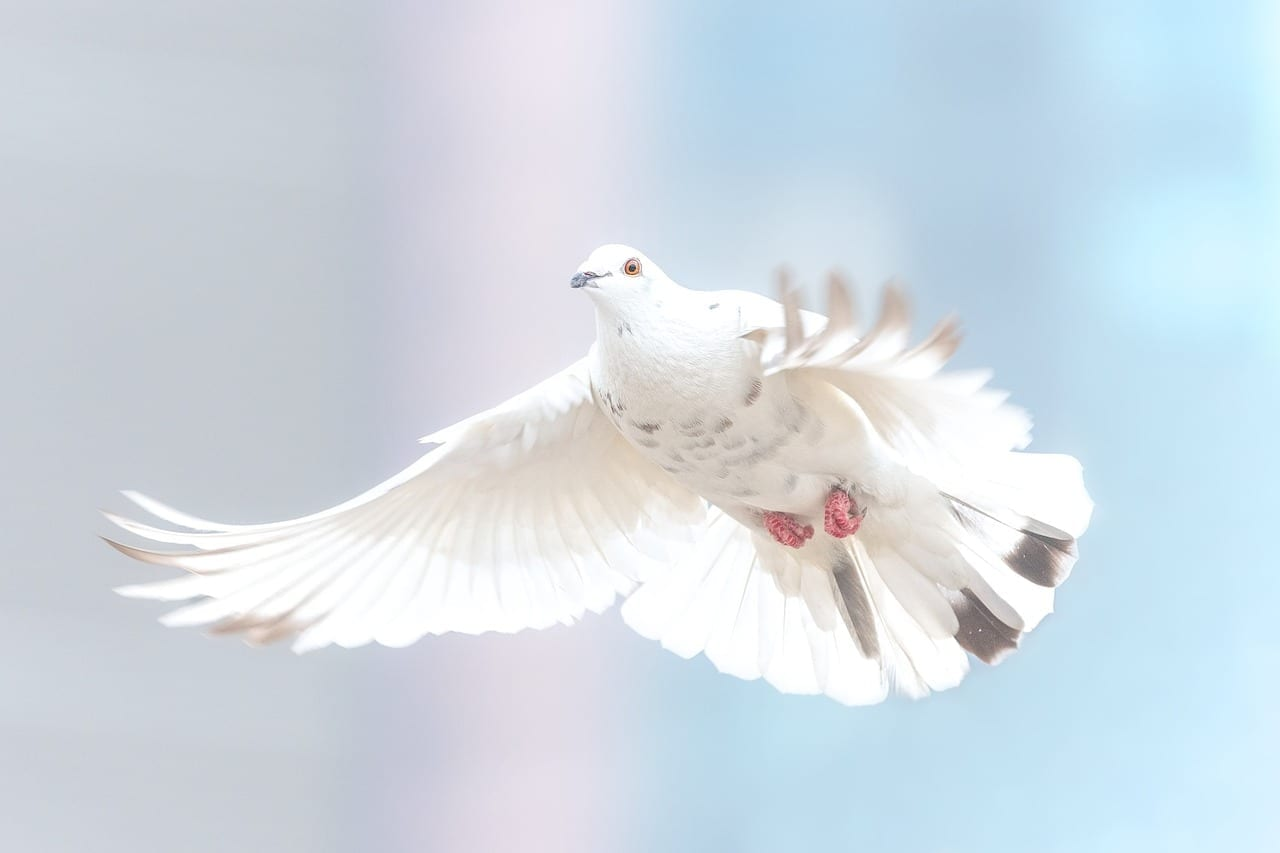spiritual gifts 1024x682 1